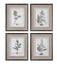 Uttermost 32510 - Uttermost Casual Grey Study Framed Art Set/4