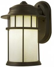 Light Concepts (Lithonia) ODSL10 GBZ - One Light Wall Lantern